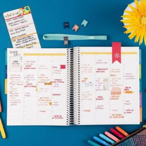 Erin-Condren-12-Month-2019-Life-Planner-01